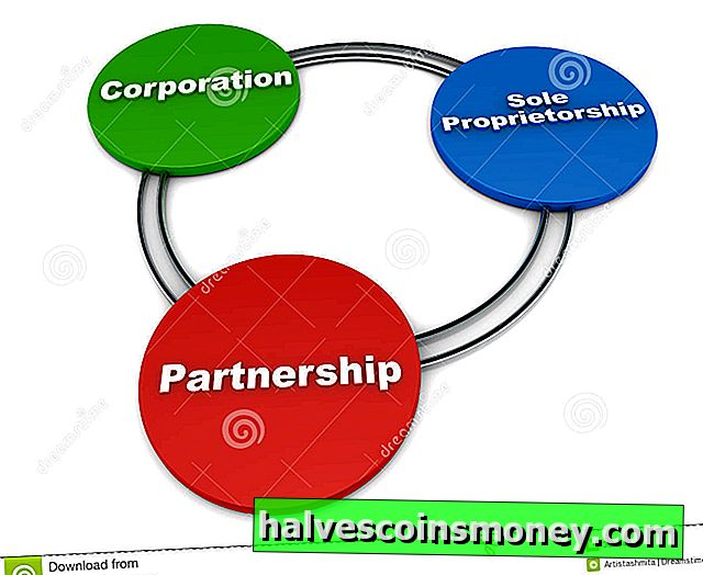Partner Rights i en LLC Business