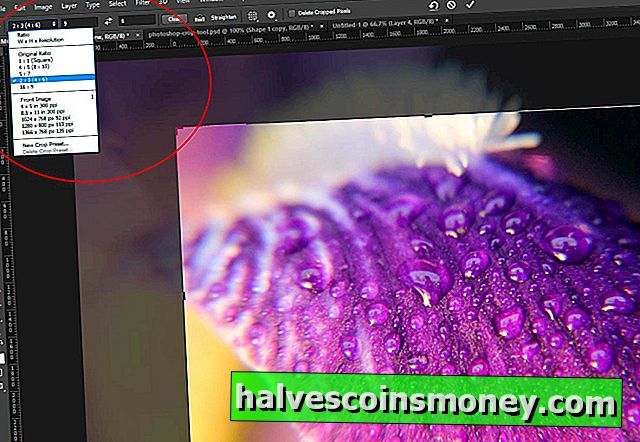 Photoshop Elements: Crop Aspect Ratio