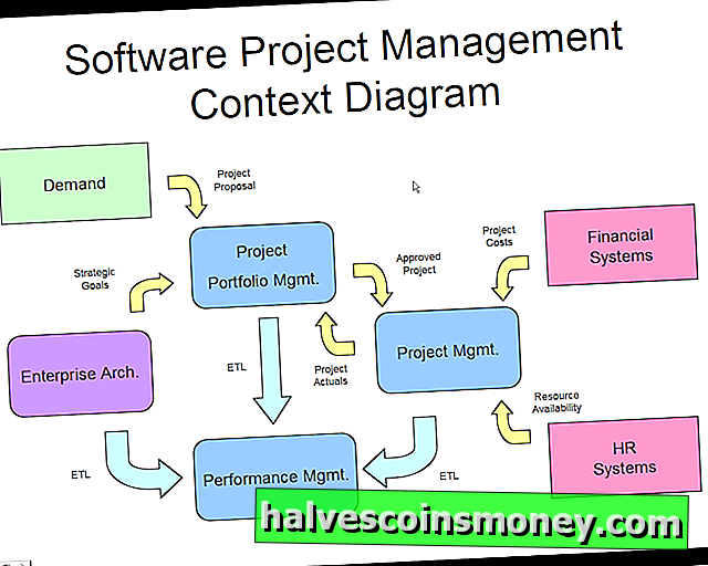 Projektmanagement & Software